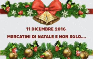 11 dicembre – Programma completo
