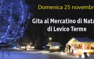 Mercatini di Natale a Levico Terme – Domenica 25/11/2018