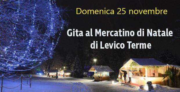 Gita Levico Terme - Mercatini di Natale